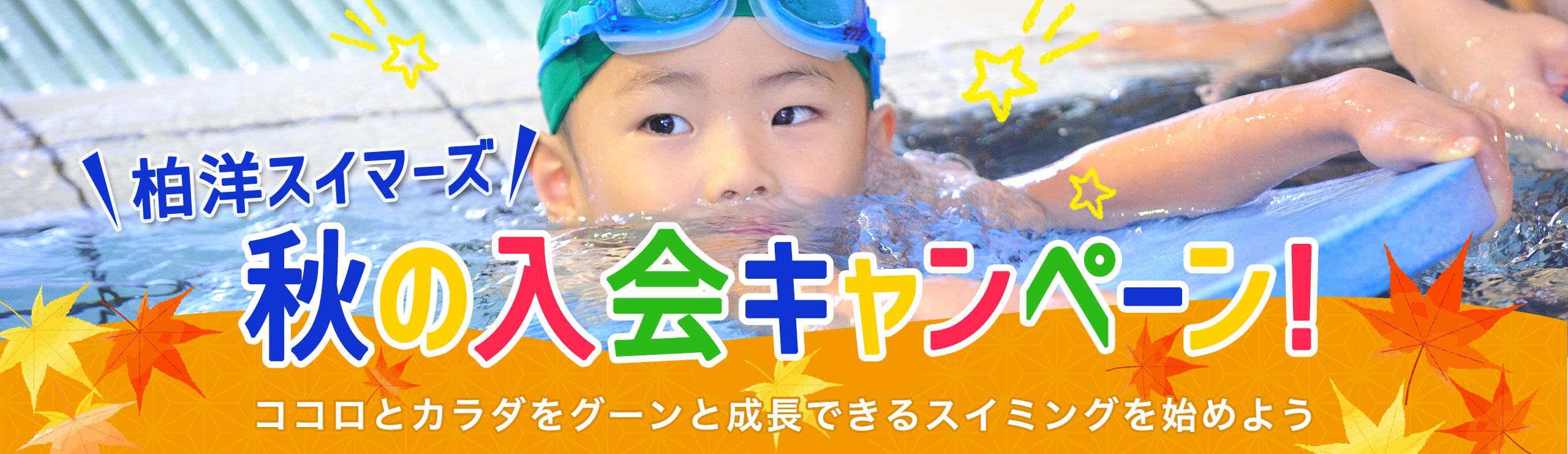 柏洋スイマーズ 秋の入会キャンペーン!